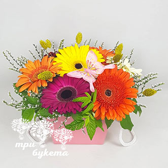 Разноцветные герберы в коробке
